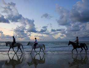 riding horses on beach